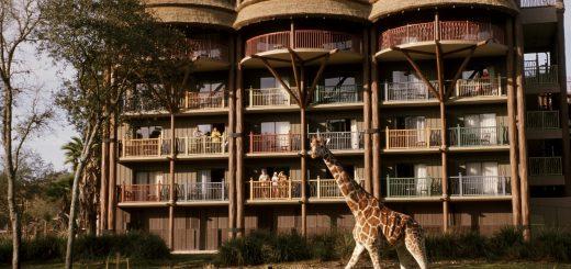 Animal Kingdom Disney