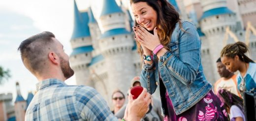 Disney Proposals