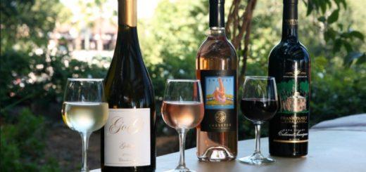 Disney Wine Tasting