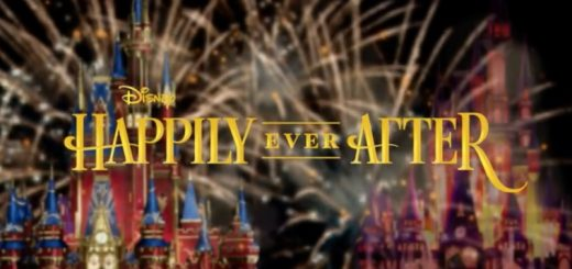 Happily Ever After Fireworks Desert Party