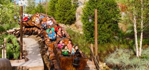 Facts about Seven Dwarfs Mine Train