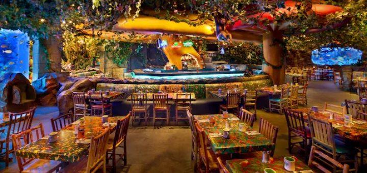 Best Table Service Restaurants At Disneys Animal Kingdom