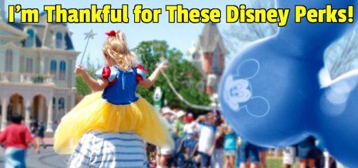 Disney perks