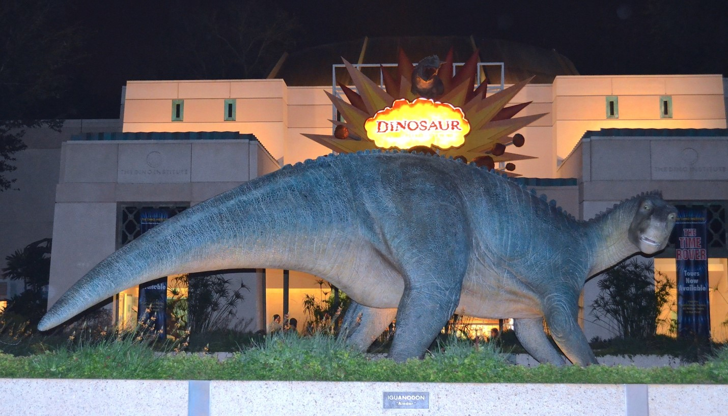Dinosaur in Animal Kingdom