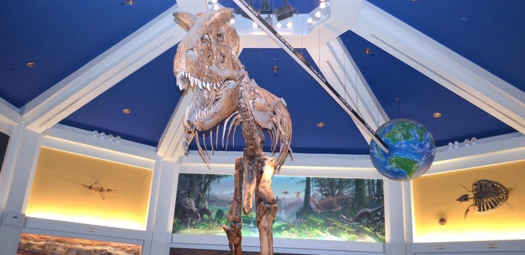 Dinosaur ride Animal Kingdom