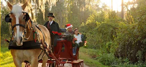 Holiday Sleigh Ride at Disney World