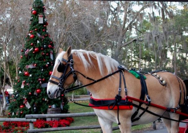 Holiday Sleigh Ride Disney