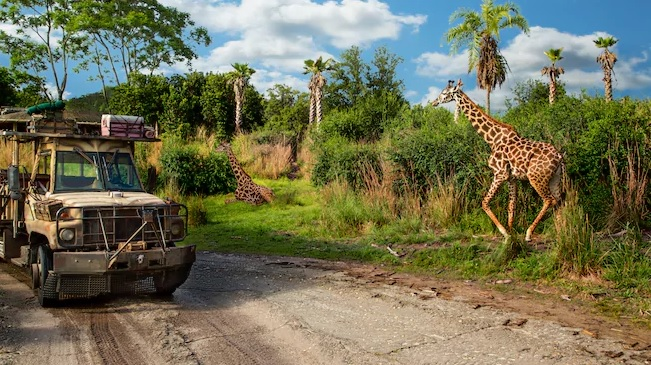 Kilimnajaro Safari Disney World
