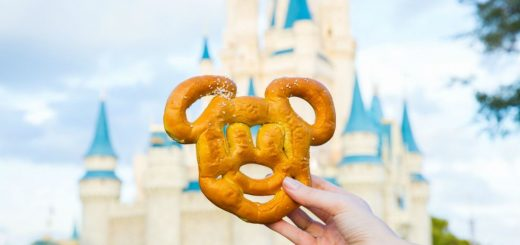 best vegan foods disney