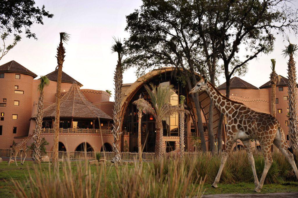 Resorts to Visit Animal Kingdom Lodge