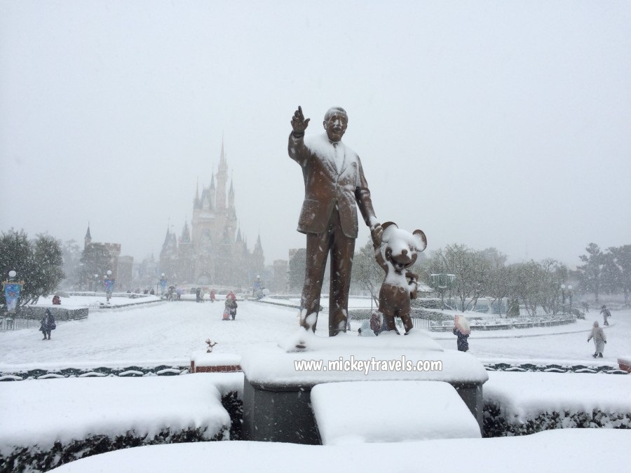 Snow at Disney