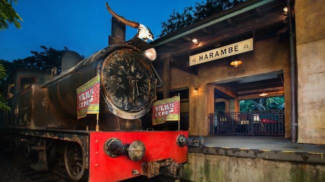 Train at Animal Kingdom