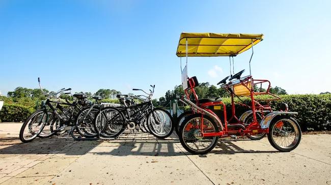 Disney Surrey bikes