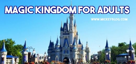 Magic Kingdom for Adults