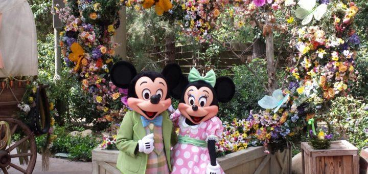 Disney in the spring