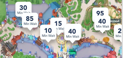 My Disney Experience Wait time