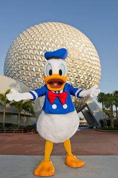 Donald Duck Birthday
