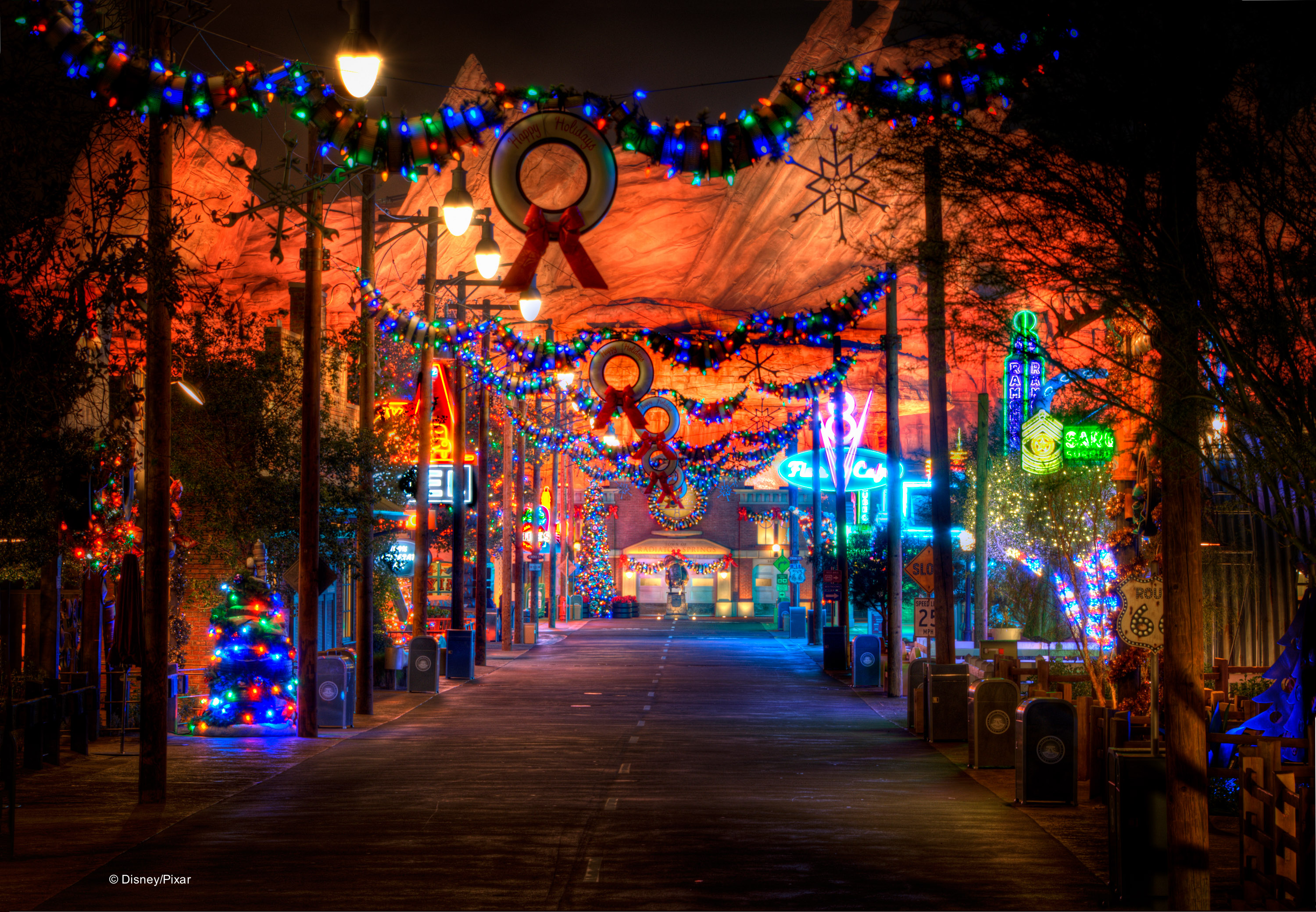 Disneyland Holiday