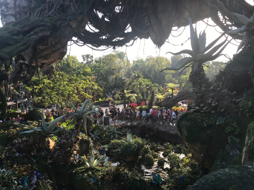 Flight of Passage Queue