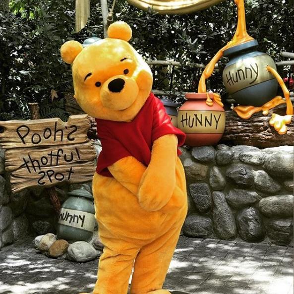 Winnie the Pooh Disneyland