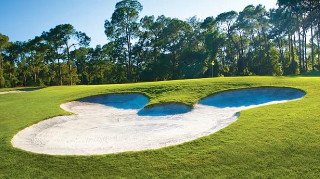 Golft Disney