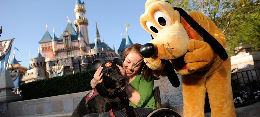 Disneyland Service Dogs
