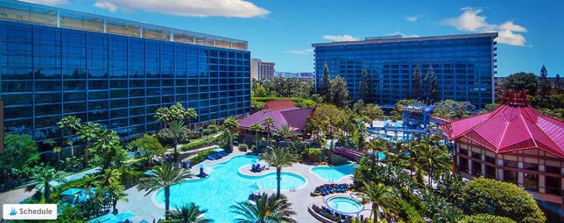 The Disneyland Hotel pool