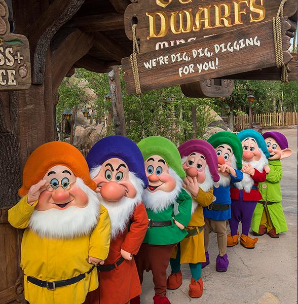 Line queue Disney