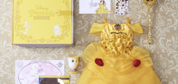 Disney Enchanted Princess Collection