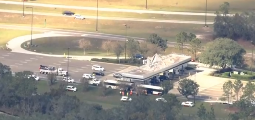 bus crash at Epcot