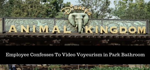 video voyeruism