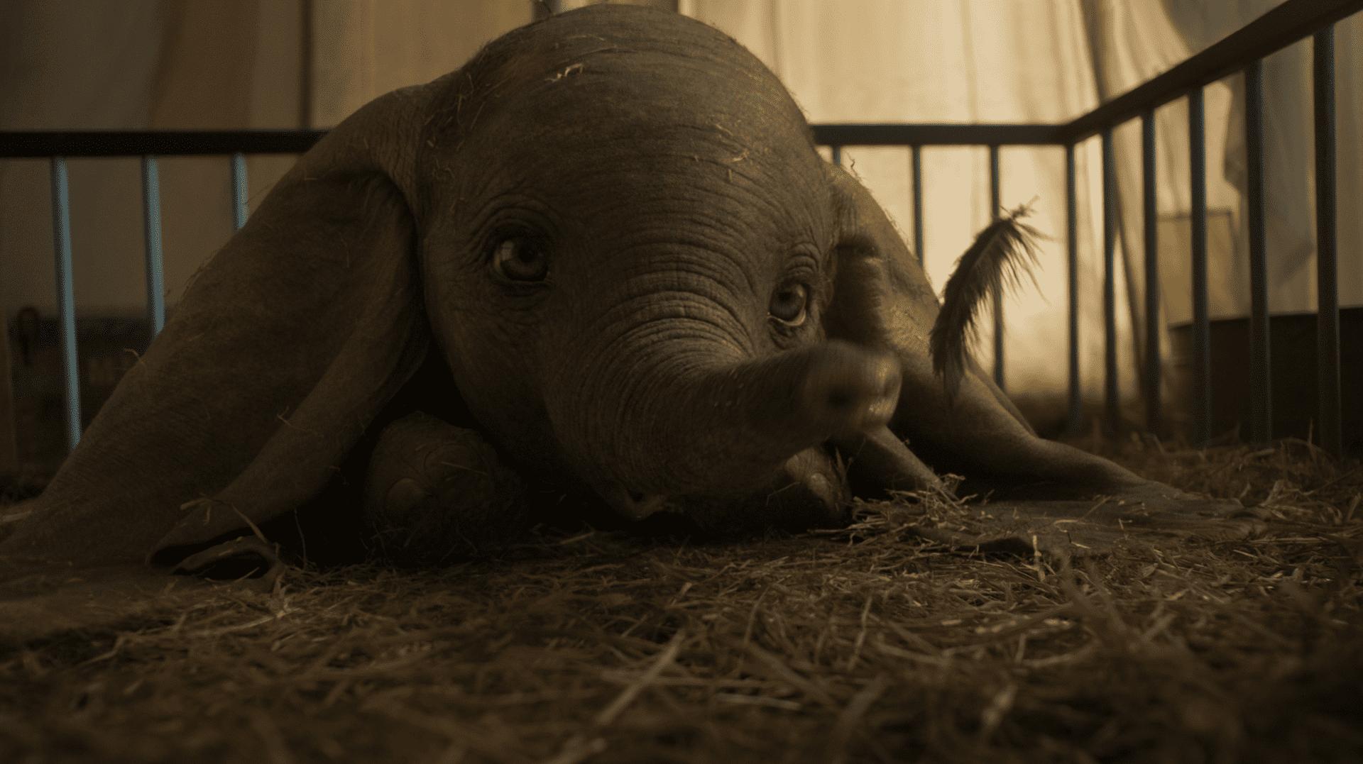 2019 Dumbo teaser