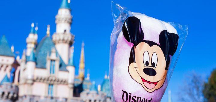 February Disneyland