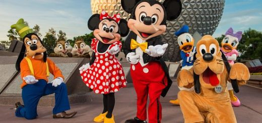 Walt Disney World Packages