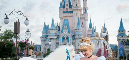 Cinderella Poiny