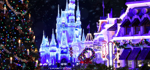 Disney Parks Holiday filming