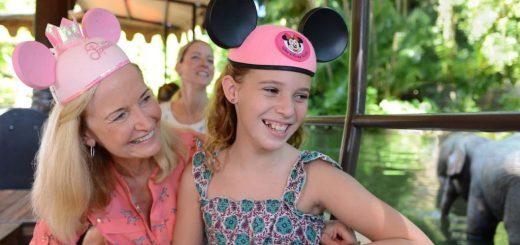 Disney Summer Offer