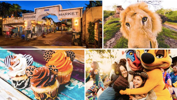 Harambe At Night An African Inspired Dining Adventure