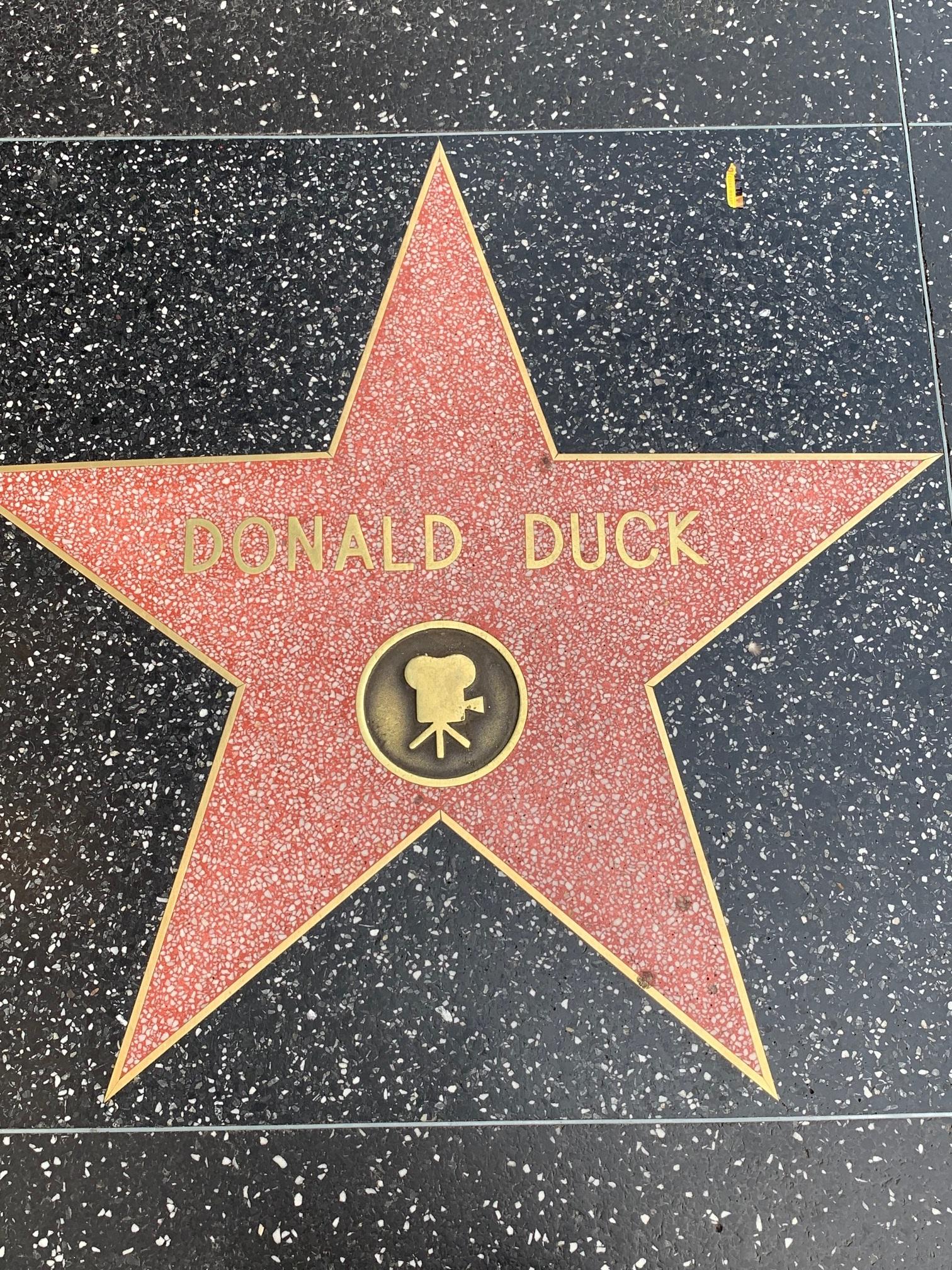 Donald Duck star