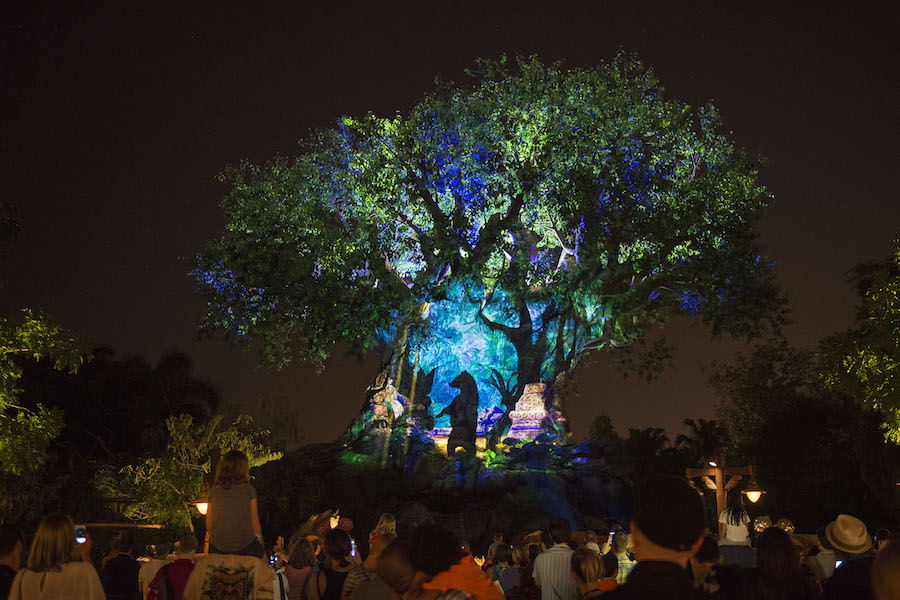 Special event at Walt Disney World