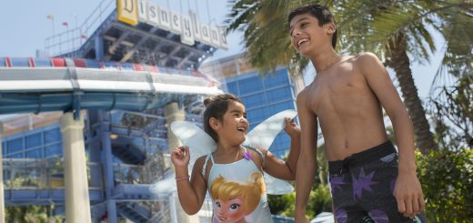 Disneyland Summer Offer