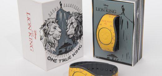 Lion King Merch