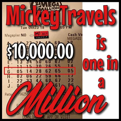 MickeyTravels Disney donation
