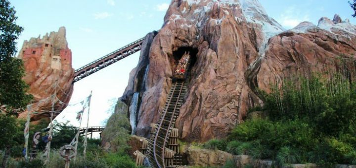 Disney Early Entry attractions