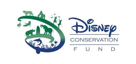 Animal Kingdom Earth Day