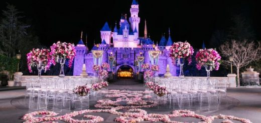 Fairy Tale Weddings Showcases