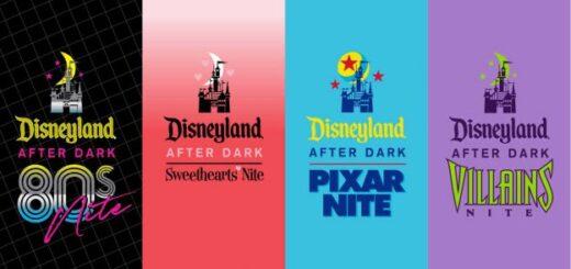 Disneyland Themed Nites