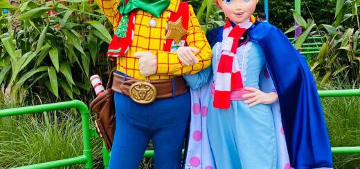 Holidays Toy Story Land