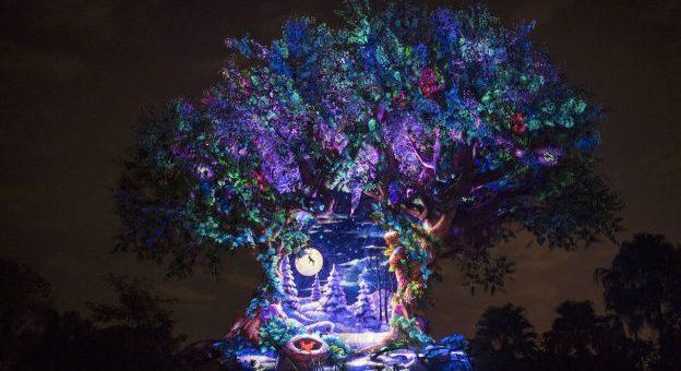 Disney World Summer 2020