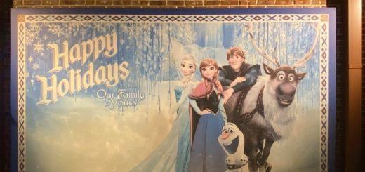 Frozen Photo Wall